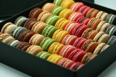 20130307-Moulin chocolat
